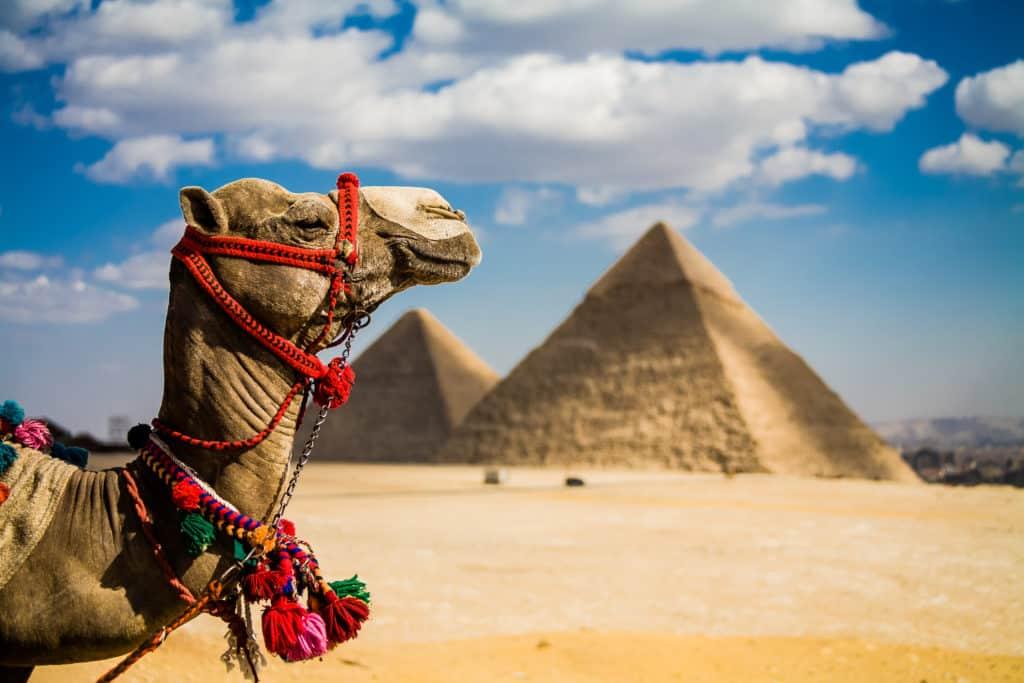 Quad Safari & Kamelritt in der Wüste von Kairo