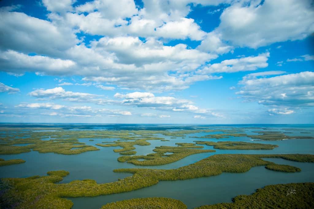 Nationalpark Everglades in Florida
