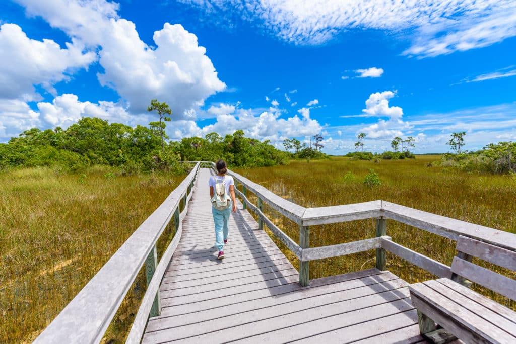 Wandern im Everglades Nationalpark